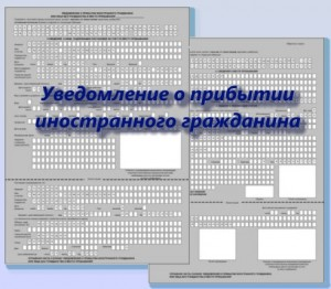 бланк миграционного учета иностранных граждан в РФ